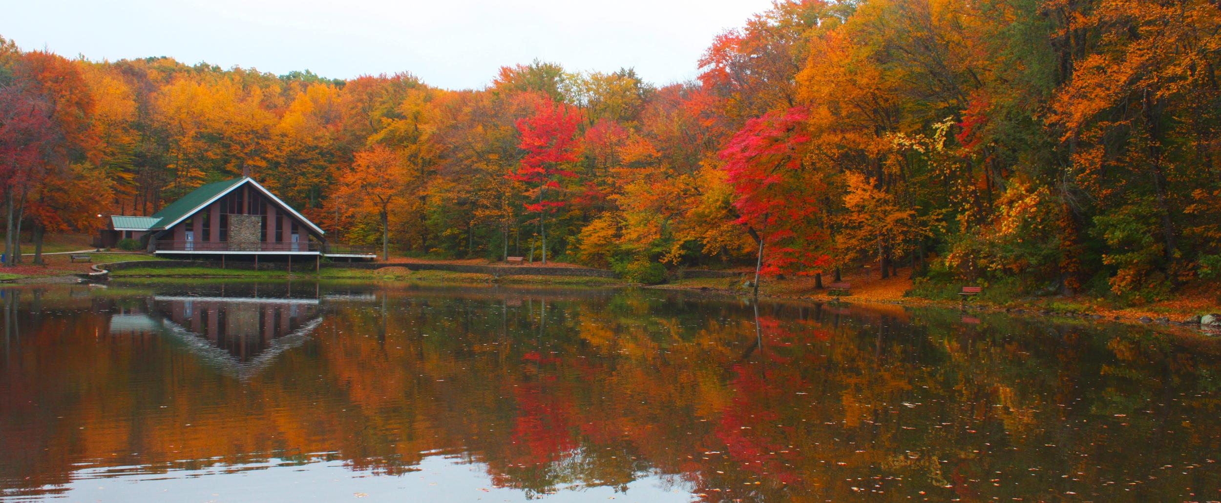 Page Park Visit Stay Enjoy Bristol Connecticut